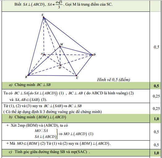 Bộ 9+ Mẫu Đề thi HK2 toán 11 Full bài giải hay nhất hiện nay